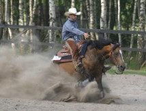 Western Riding Training Center FURIOSO